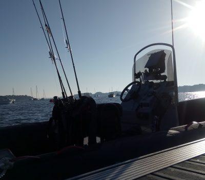 pêche au bar en bateau dans le Golfe du Morbihan, avec Mickaël RIO, moniteur guide de pêche professionnel