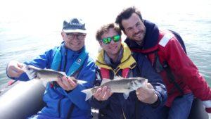 Guide de pêche Golfe du Morbihan- Sortie pêche Golfe du Morbihan- Sortie pêche en mer en bateau- Stage de pêche au bar et dorade à Sarzeau