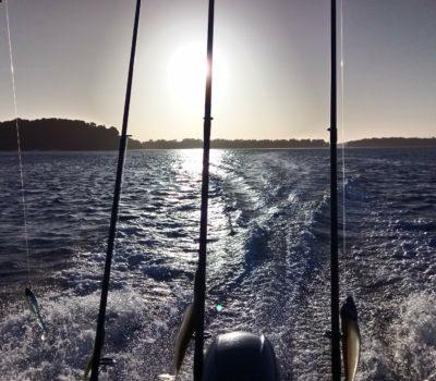 Départ pour une sortie pêche au Bar, sous le soleil !